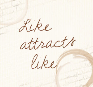 like-attracts-like